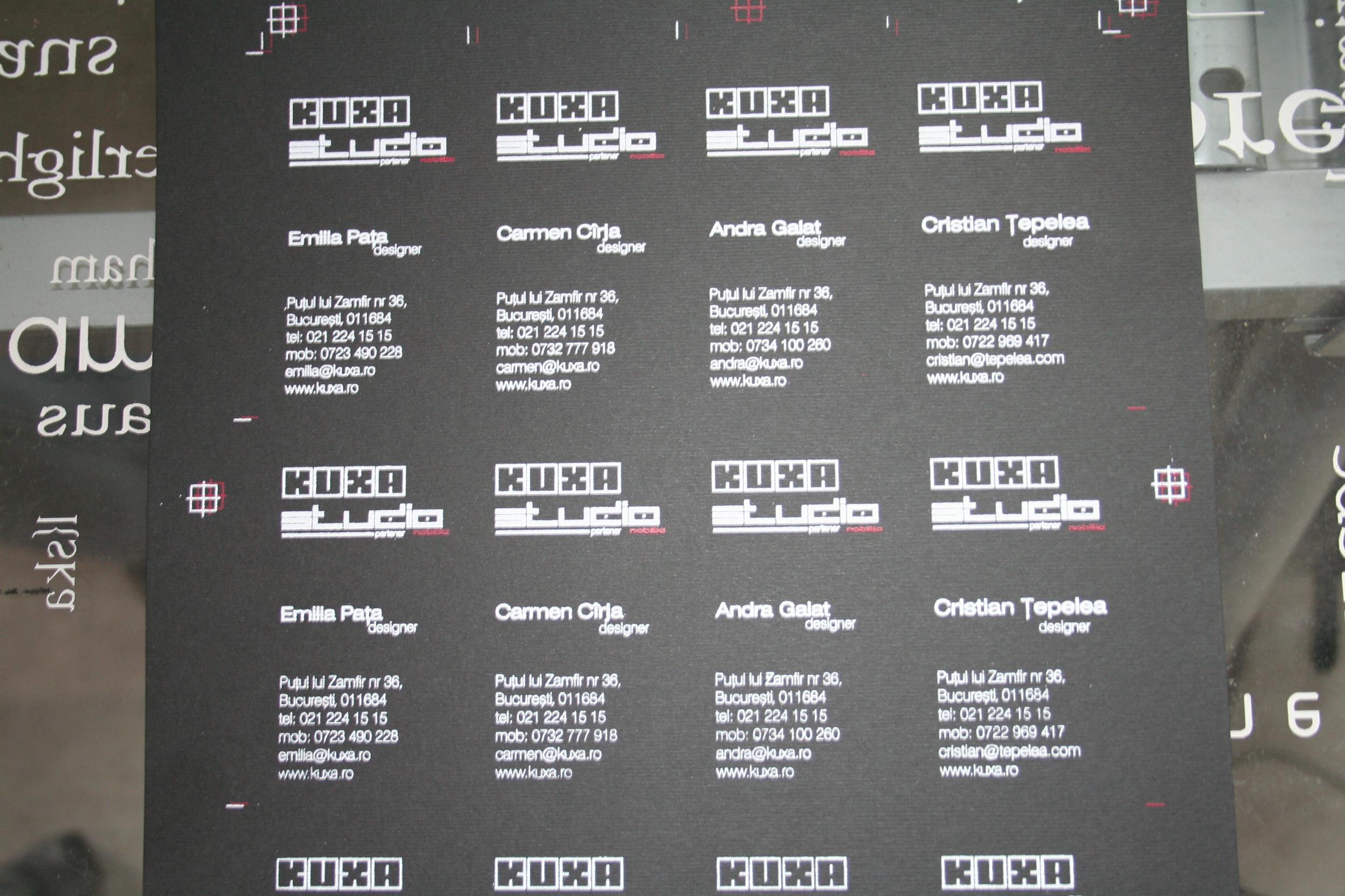 Carti de vizita imprimate serigrafica